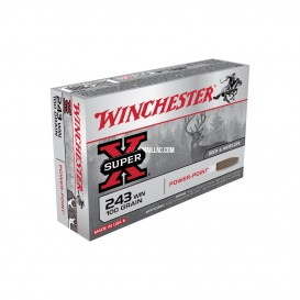 MUNITIONS BALLES WINCHESTER 243W POWER POINT
