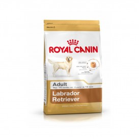 CROQUETTES ROYAL CANIN LABRADOR ADULTE