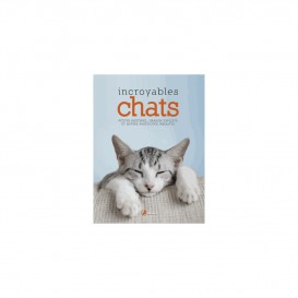 INCROYABLES CHATS