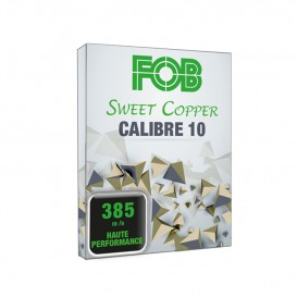 CARTOUCHES FOB SWEET COPPER CALIBRE 10 MAGNUM