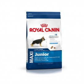 CROQUETTES ROYAL CANIN MAXI JUNIOR