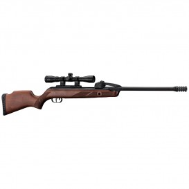 PACK CARABINE A AIR GAMO FAST SHOT 10X IGT + LUNETTE 4 X 32 WR